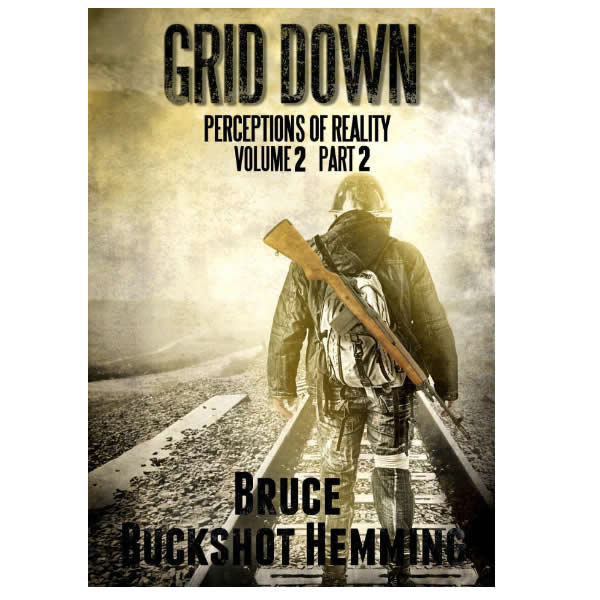 Grid Down: Perceptions of Reality, Vol. 2 Part 2