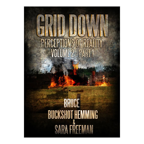 Grid Down: Perceptions of Reality, Vol. 2 Part 1